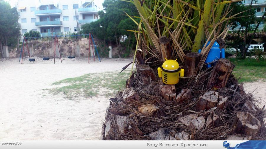 Androidi na palmi