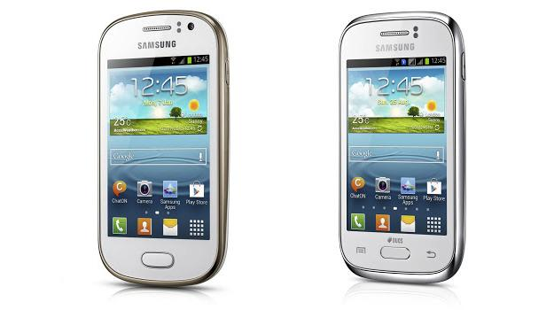 Samsung Galaxy Fame i Young